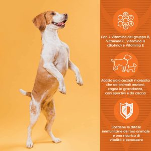 DAILYDOG Multivitaminico per cani