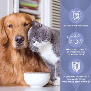 DAILYFLOR Benessere intestinale di cani e gatti