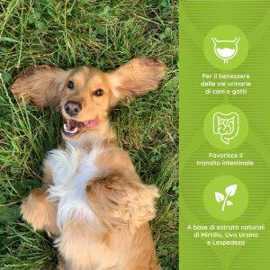 DRENAPET Benessere delle vie urinarie di cani e gatti